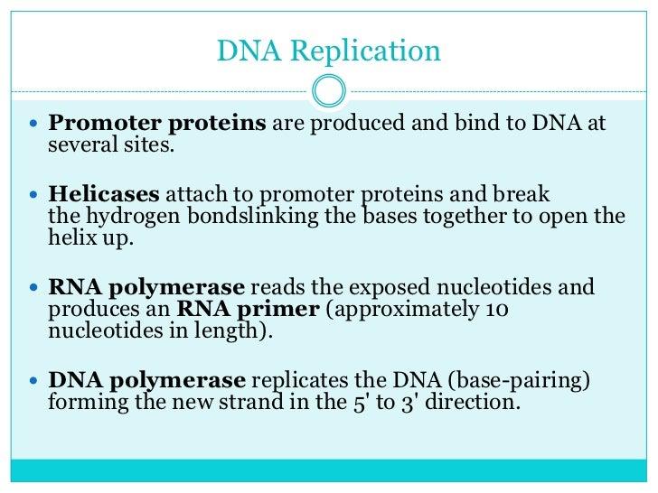 molecular genetics lectures pdf free