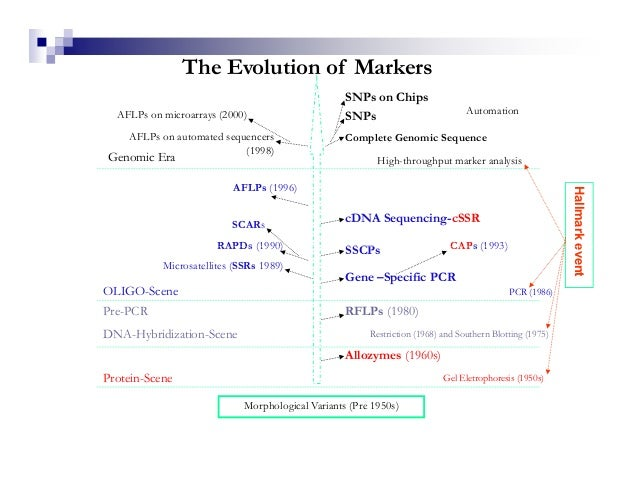 The Evolution of Markers                                                   SNPs on Chips  AFLPs on microarrays (2000)     ...