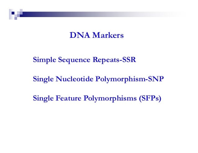 DNA MarkersSimple Sequence Repeats-SSRSingle Nucleotide Polymorphism-SNPSingle Feature Polymorphisms (SFPs)