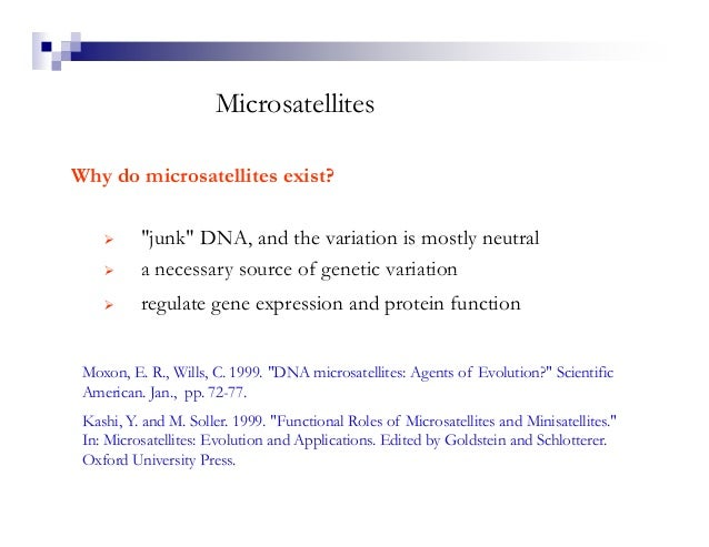 """MicrosatellitesWhy do microsatellites exist?          """"junk"""" DNA, and the variation is mostly neutral          a necessary..."""
