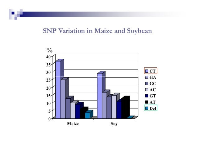 SNP Variation in Maize and Soybean % 40 35 30                              CT                                 GA 25       ...