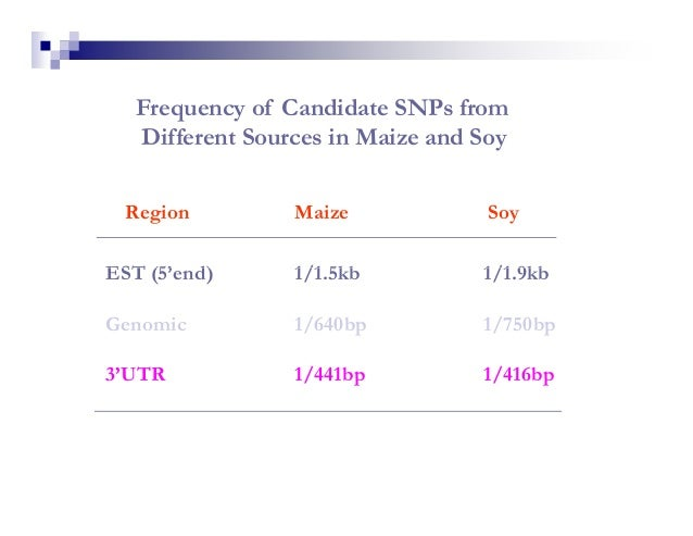 Frequency of Candidate SNPs from   Different Sources in Maize and Soy  Region         Maize             SoyEST (5'end)    ...
