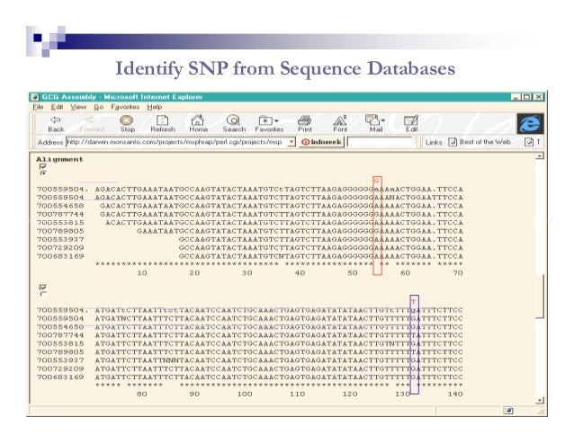 Identify SNP from Sequence Databases