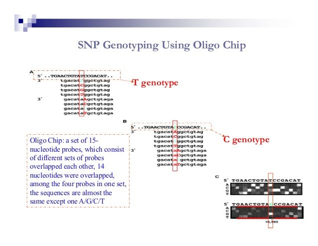 Direct Sequencing - New Sequencing TechnologyPyrosequencing technology offers rapid and accurate genotyping, allowing ford...