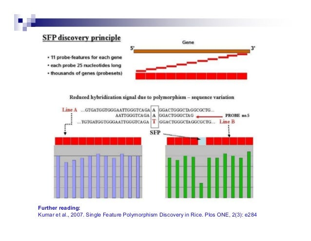 Summary of Common Molecular MarkersMultiple Loci                                       DetectionAFLP (amplified fragment l...