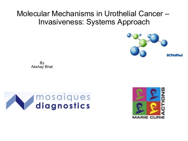 Molecular Mechanisms in Urothelial Cancer – Invasiveness: Systems Approach By Akshay Bhat