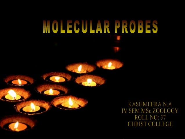 MOLECULAR PROBES• Small DNA / RNA segments.• Used to detect complementary sequences  in nucleic acid samples.• Abs – probe...