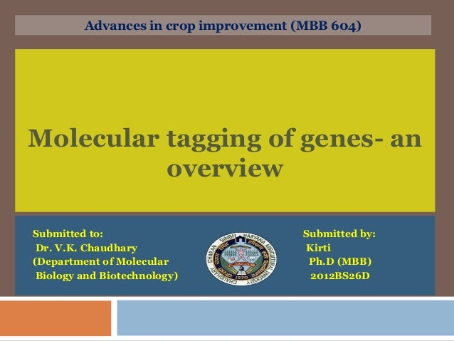 Molecular tagging of genes- an overview Submitted to: Submitted by: Dr. V.K. Chaudhary Kirti (Department of Molecular Ph.D...