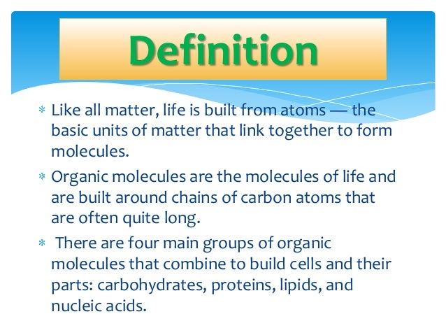 Molecules of life 9th grade – Molecules of Life Worksheet