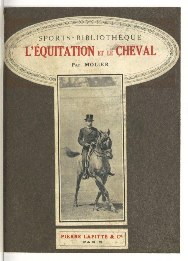 Cuir d/'Équitation Fouet accessoire robe fantaisie cheval cavalier équitation UK Vendeur Rapide Post