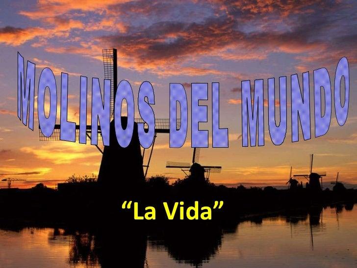 """MOLINOS DEL MUNDO  """" La Vida"""""""