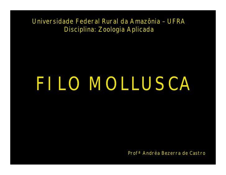 Universidade Federal Rural da Amazônia – UFRA         Disciplina: Zoologia Aplicada FILO MOLLUSCA                         ...