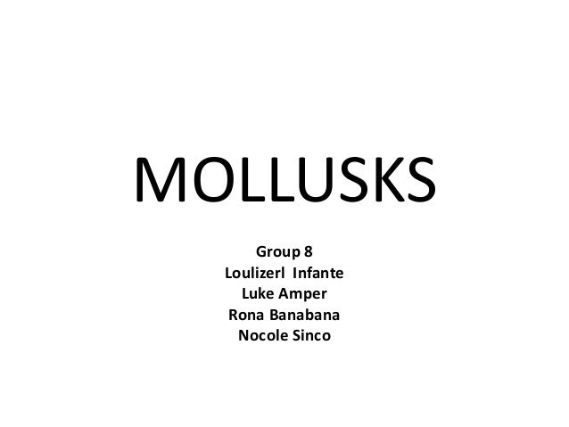 MOLLUSKS Group 8 Loulizerl Infante Luke Amper Rona Banabana Nocole Sinco