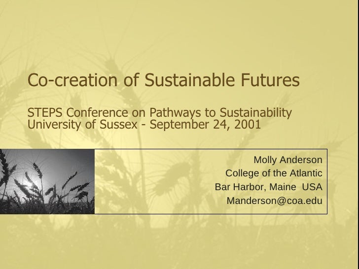 Co-creation of Sustainable Futures STEPS Conference on Pathways to Sustainability University of Sussex - September 24, 200...