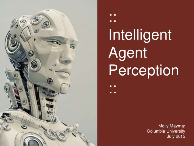 :: Intelligent Agent Perception :: Molly Maymar Columbia University July 2015
