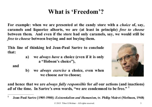 The many faces of freedom essay
