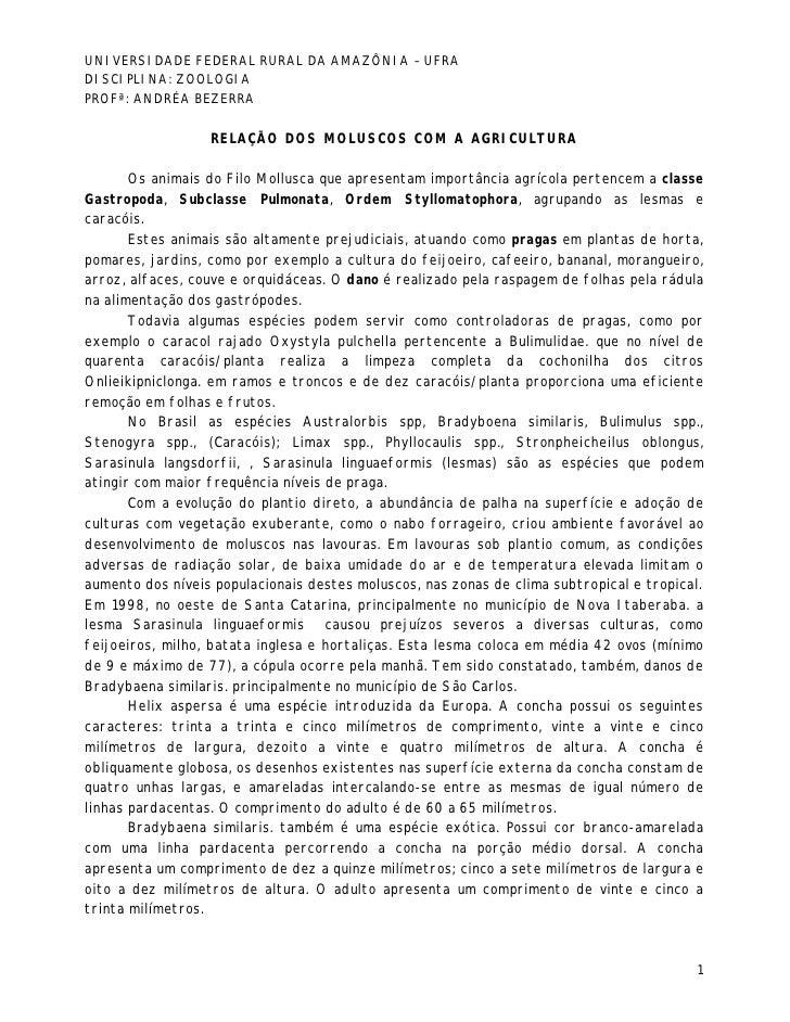 UNIVERSIDADE FEDERAL RURAL DA AMAZÔNIA – UFRADISCIPLINA: ZOOLOGIAPROFª: ANDRÉA BEZERRA                  RELAÇÃO DOS MOLUSC...