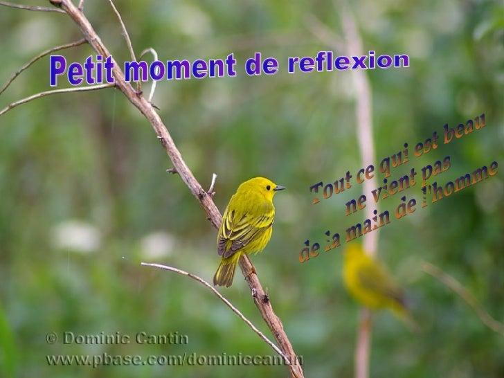 Petit moment de reflexion Tout ce qui est beau  ne vient pas  de la main de l'homme