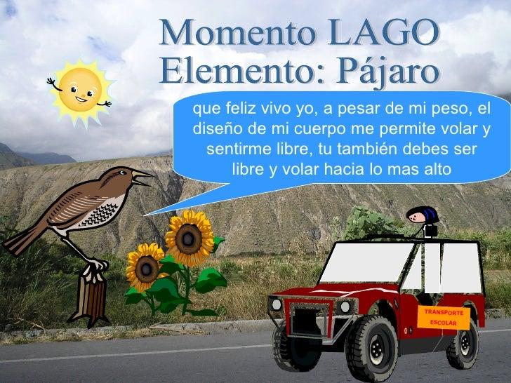 Momento LAGO Elemento: Pájaro que feliz vivo yo, a pesar de mi peso, el diseño de mi cuerpo me permite volar y sentirme li...