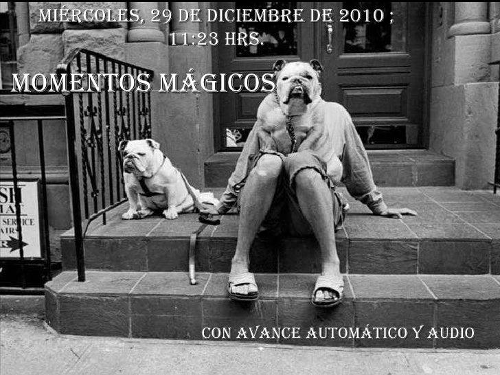 MOMENTOS MÁGICOS Con avance automático y audio miércoles, 29 de diciembre de 2010  ; 11:10  hrs.