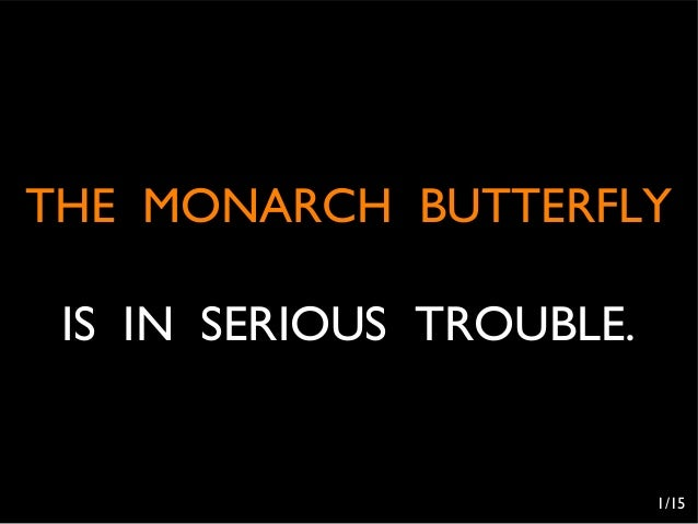 THE MONARCH BUTTERFLY IS IN SERIOUS TROUBLE.                          1/15