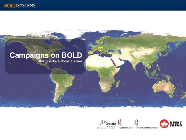 Campaigns on BOLD      Dirk Steinke & Robert Hanner