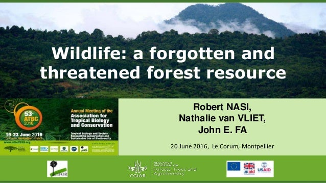 Wildlife: a forgotten and threatened forest resource Robert NASI, Nathalie van VLIET, John E. FA 20 June 2016, Le Corum, M...