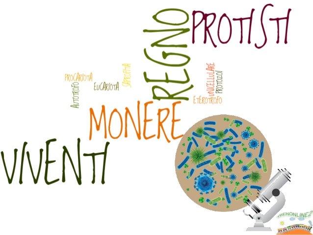 Sonoorganismimoltosemplici.  Sonoprocariotiunicellularieterotrofi.