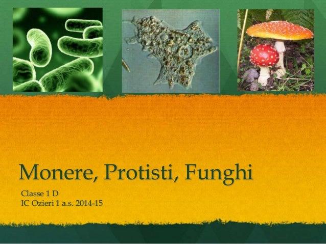 Monere, Protisti, Funghi Classe 1 D IC Ozieri 1 a.s. 2014-15