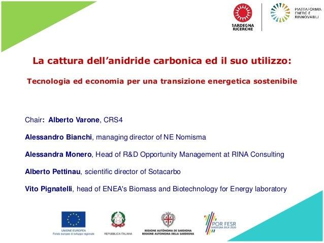 La cattura dell'anidride carbonica ed il suo utilizzo: Tecnologia ed economia per una transizione energetica sostenibile C...