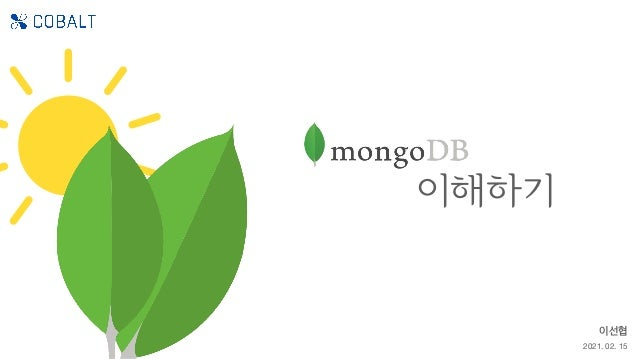 MongoDB 이해하기