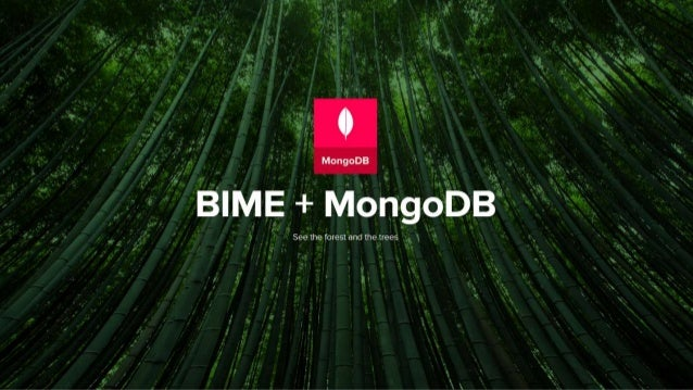 Tw 3-,  er        See the forest and the trees  `     2     1 W BIME + MohgoVDB. *