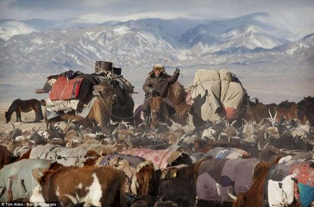 Mongolian Nomads' Spring Migration-Photographer Timothy Allen