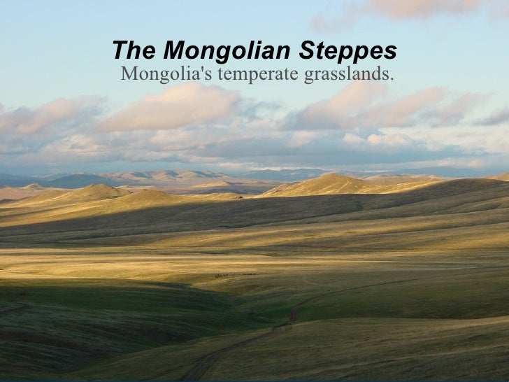Mongolia's temperate grasslands. The Mongolian Steppes