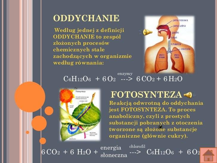 ODDYCHANIE    Według jednej z definicji   ODDYCHANIE to zespół   złożonych procesów   chemicznych stale   zachodzących w o...