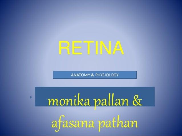 RETINA - anatomy & physiology