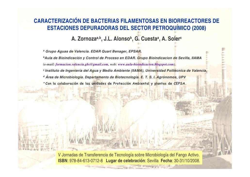 CARACTERIZACIÓN DE BACTERIAS FILAMENTOSAS EN BIORREACTORES DE     ESTACIONES DEPURADORAS DEL SECTOR PETROQUÍMICO (2008)   ...