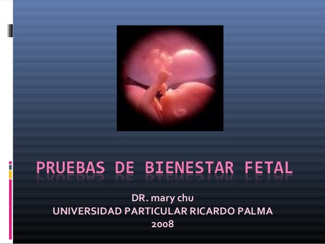 DR. mary chuUNIVERSIDAD PARTICULAR RICARDO PALMA                 2008