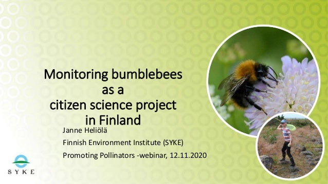 Monitoring bumblebees as a citizen science project in Finland Janne Heliölä Finnish Environment Institute (SYKE) Promoting...