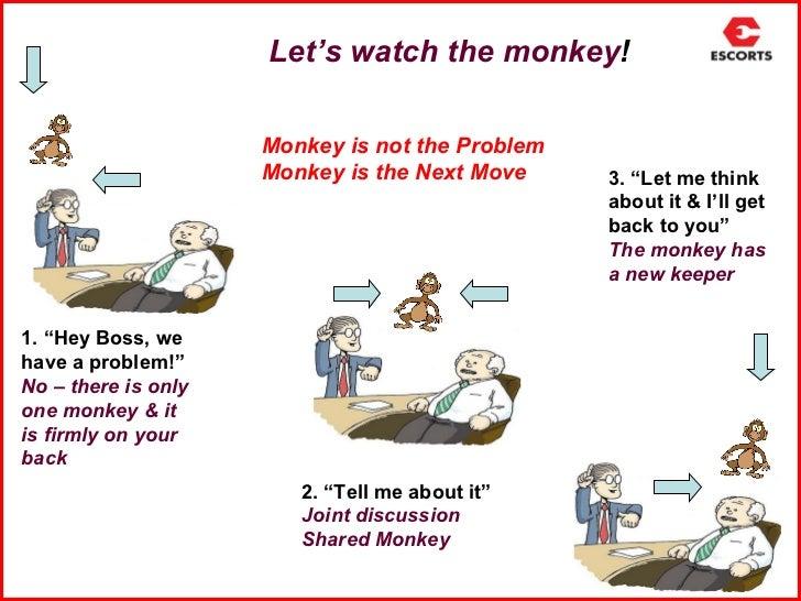 monkey busiess