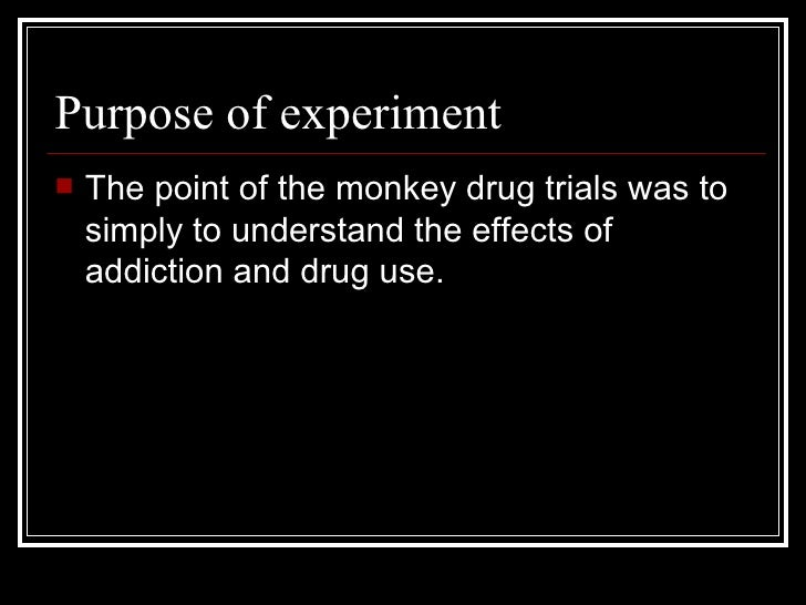 The stanford prison experiment essay