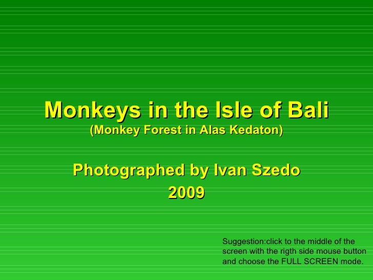 Monkeys in the Isle of Bali (Monkey Forest in Alas Kedaton) Photographed by Ivan Szedo 2009 Suggestion:click to the middle...