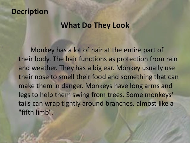 a description of the primate species profile Disclaimer: the animal diversity web is an educational resource written largely by and for college studentsadw doesn't cover all species in the world, nor does it include all the latest scientific information about organisms we describe.