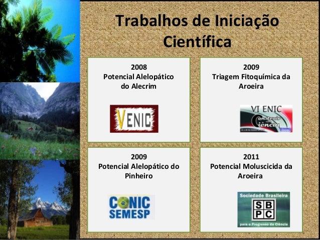 Trabalhos de Iniciação Científica Slide 2