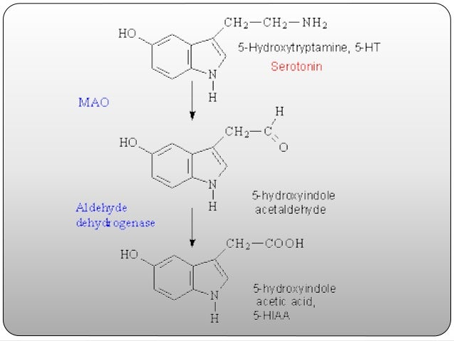 5-HT2B, -contributes to the contractile effects of serotonin in the stomach fundus and plays important roles in cardiac d...