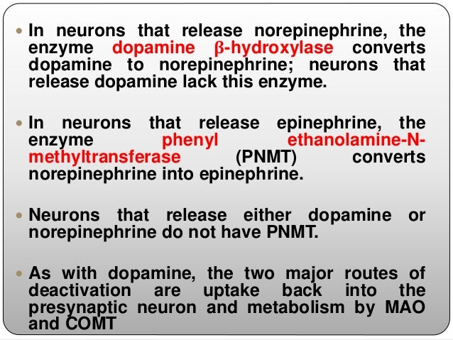  The well-known sedative effects of these compounds have been attributed to their actions in the CNS and have implicated ...