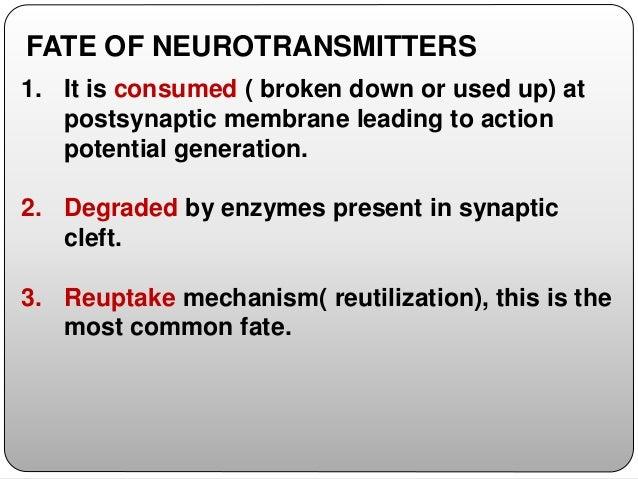 CLASSIFICATION OF NEUROTRANSMITTERS