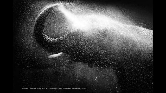 Fine Art Discovery of the Year 2020- Making A Splash by Michael Johannsen (Austria)