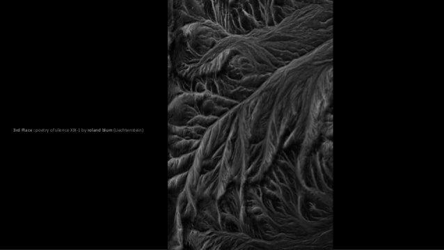 3rd Place : poetry of silence XIX-1 by roland blum (Liechtenstein)