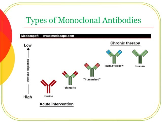 Multiple Myeloma: The Antibodies are Coming! - Rocky Mountain ...